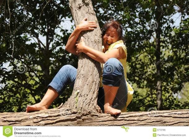 frightened-lady-tree-5712185