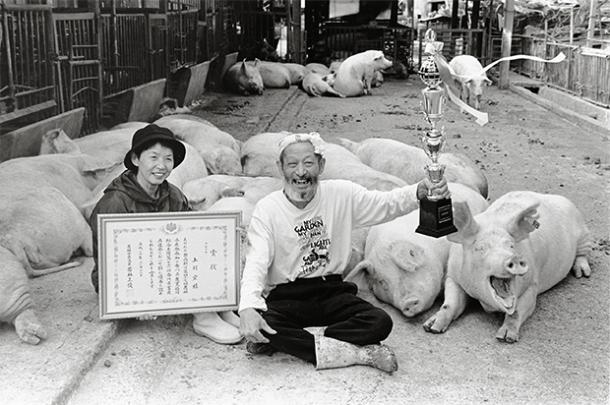 pig_farmer_cerdo_granjero_toshiteru_yamaji9