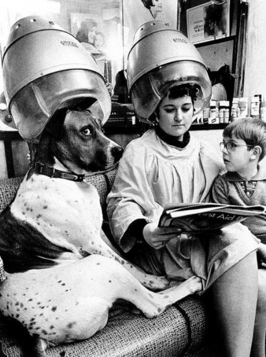 Salon-Funny-Vintage-Image